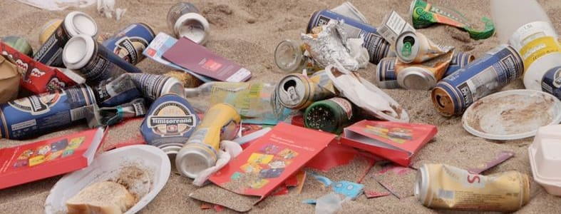 Vrijwilligers maken Nederlandse stranden schoon