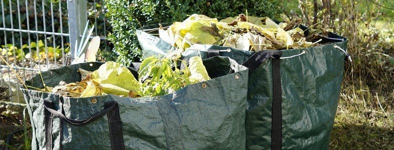 Natuurgebieden bedreigt door gedumpt tuinafval | Afvalcontainerbestellen.nl
